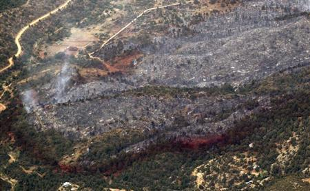 An aerial view of a strip of fire retardant near Yarnell, Arizona separating the burned area from the green area is seen on July 1, 2013. REUTERS/Rick Wilking