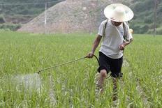 Фермер разбрызгивает удобрения на рисовом в Саньцзяне в Гуанси-Чжуанском автономном районе Китая 26 мая 2007 года. Крупнейшие в мире импортеры калийных удобрений Индия и Китай добиваются от производителей существенных - до 25 процентов - скидок на хлоркалий после краха державшего цены влиятельного картеля - Белорусской калийной компании, говорят представители отрасли. REUTERS/ Nir Elias
