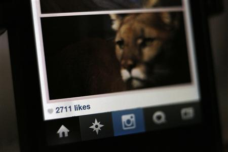 The number of likes on an Instagram photo are pictured on a mobile device screen in Pasadena, California August 14, 2013. Researchers with RSA security have learned that Zbot, one of the world's biggest botnets is creating fake Instagram accounts and selling bundled followers and ''likes'' at rates that are much higher than what it charges for credit card numbers. REUTERS/Mario Anzuoni