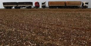 Caminhões fotografados na estrada BR-364, próximo a uma fazenda de algodão, em Alto Garças, Mato Grosso. A fabricante de implementos rodoviários e autopeças Randon teve alta de 30,5 por cento na receita líquida de julho em relação a uma fraca base de comparação com o mesmo período do ano passado, em meio ao ainda forte desempenho das vendas de caminhões no país. 17/09/2012. REUTERS/Nacho Doce