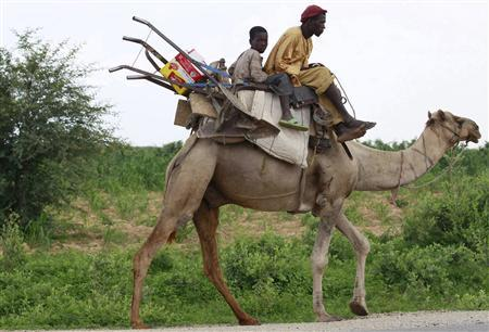 A man and his son, with their farming tools, sit on a camel along Sokoto-Anka road, in northeastern state of Zamfara August 14, 2013. REUTERS/Akintunde Akinleye