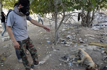An activist wearing a gas mask stands next to a dead dog as he looks for dead bodies to collect samples to check for chemical weapon use, in Zamalka area, where activists say chemical weapons have been used by forces loyal to President Bashar Al-Assad in the eastern suburbs of Damascus August 22, 2013. REUTERS/Bassam Khabieh