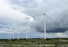 Gado pasta próximo a turbinas eólicas em Paracuru, no litoral do Ceará. O rápido leilão de reserva desta sexta-feira contratou energia de 1.505 megawatts (MW) em projetos eólicos ao preço médio de 110,51 reais por megawatt-hora (MWh), um desconto de 5,54 por cento ante o preço inicial máximo de 117 reais por MWh. 24/04/2009. REUTERS/Stuart Grudgings