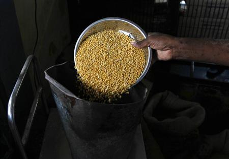 A man who runs a government subsidized food shop weighs lentil inside his shop in Chennai July 9, 2013. REUTERS/Babu/Files