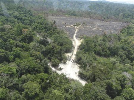 A part of the Amazon rainforest destroyed by loggers and farmers is pictured during Operation Labareda, a raid against illegal logging, in this aerial handout photo taken by Brazil's environmental police force IBAMA, near Novo Progresso in Para State August 17, 2012. REUTERS/Nelson Feitosa/IBAMA/Handout