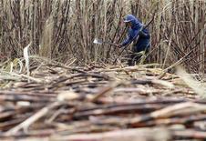 Trabalhador corte cana de açúcar em Campos dos Goytacazes, no Rio de Janeiro. A produção de etanol do centro-sul do Brasil cresceu na segunda metade de agosto para atender a uma demanda mais forte no mercado interno, enquanto as usinas da principal região produtora de cana do país reduziram a fabricação de açúcar, apontaram dados da União da Indústria de Cana-de-Açúcar (Unica) nesta terça-feira. 10/11/2010 REUTERS/Sérgio Moraes