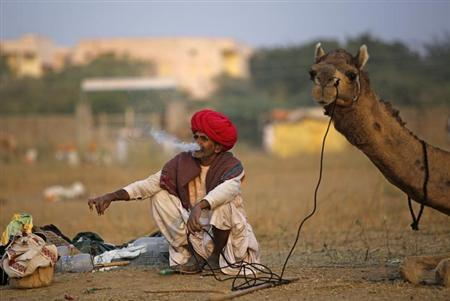 A camel herder smokes on while waiting for customers at Pushkar Fair in the desert Indian state of Rajasthan November 22, 2012. REUTERS/Danish Siddiqui/Files