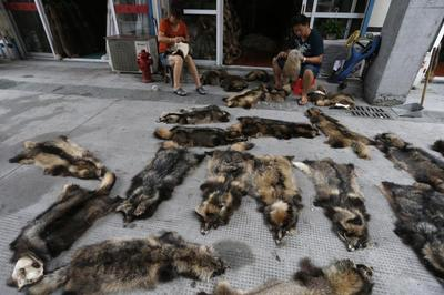 Fur for sale