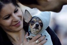 A woman holds her dog during a rally against a new law allowing dogs caught in public spaces to be put down in Bucharest September 15, 2013. REUTERS/Bogdan Cristel