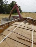 Imagen de archivo de un camión cargando granos de trigo en General Belgrano, Argentina, dic 18 2012. Las heladas que se reportaron en la madrugada del martes en gran parte de la región agrícola de Argentina y que se repetirían el fin de semana afectarán al trigo del ciclo 2013/14, lo que generaría pérdidas de rendimiento en uno de los mayores exportadores mundiales del cereal, dijeron expertos climáticos. REUTERS/Enrique Marcarian