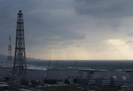 Tokyo Electric Power Co.'s (TEPCO) Kashiwazaki Kariwa nuclear power plant, which is the world's biggest, is seen from its observatory in Kashiwazaki, November 12, 2012. REUTERS/Kim Kyung-Hoon/Files