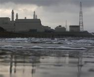 Tokyo Electric Power Co.'s (TEPCO) Kashiwazaki Kariwa nuclear power plant, which is the world's biggest, is seen from a seaside in Kashiwazaki, November 12, 2012 file photo. REUTERS/Kim Kyung-Hoon/Files