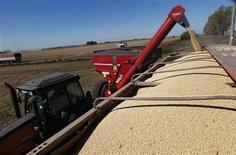 Un camión cargando un cargamento de soja en un campo en Chacabuco, Argentina, abr 24 2013. Los productores argentinos están reteniendo está temporada más soja de la habitual para evitar perdidas del valor de sus ahorros en una economía que sufre una inflación de dos dígitos, lo que podría reducir la recaudación de impuestos por exportaciones. REUTERS/Enrique Marcarian