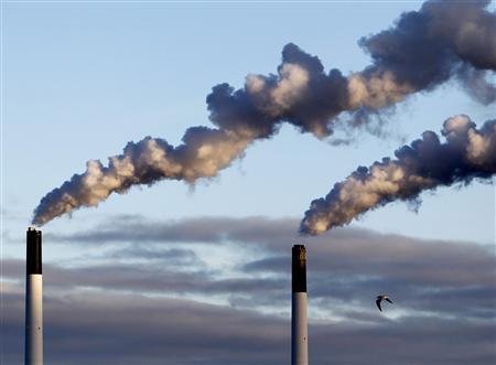 A bird flies near chimneys emitting smoke in Copenhagen January 26, 2011. REUTERS/Yves Herman