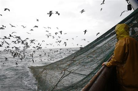 Fishermen on the Boulogne sur Mer based trawler 'Nicolas Jeremy' raise the fishing nets, off the coast of northern France October 21, 2013. REUTERS-Pascal Rossignol