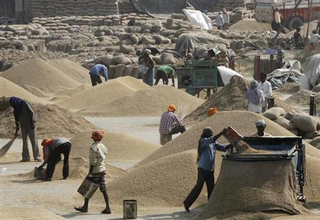 Labourers remove dust from paddy crop at a wholesale grain market in Chandigarh October 22, 2013. REUTERS/Ajay Verma