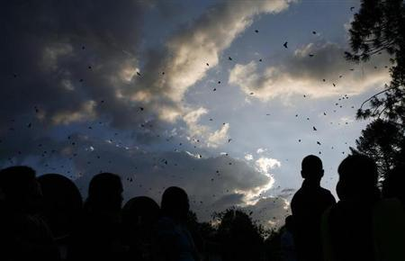 People watch crows flock around as Gautam Sapkota, a self-proclaimed 'crow caller', produces bird sounds to attract them, in Kathmandu October 16, 2009. REUTERS/Shruti Shrestha/Files