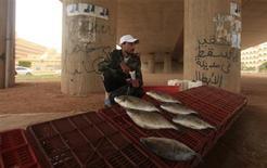 Un hombre vende peces bajo un puente en Bengazi, Libia, ene 29 2013. roblemas de pago, caos y corrupción están impidiendo que los importadores libios logren buenos acuerdos para comprar trigo, otro revés para el país que sigue convulsionado dos años después de que el dictador Muammar Gaddafi fuera depuesto. REUTERS/Esam Al-Fetori