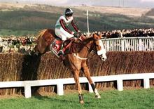 Jockey Tony McCoy riding Mr Mulligan jumps the last fence at Cheltenham race course March 13 . SPORT HORSERACING - RTR2EYG