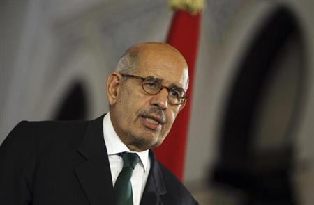 Egypt's interim Vice President Mohamed ElBaradei speaks during a news conference with European Union foreign policy chief Catherine Ashton (unseen) at El-Thadiya presidential palace in Cairo July 30, 2013. REUTERS/Amr Abdallah Dalsh