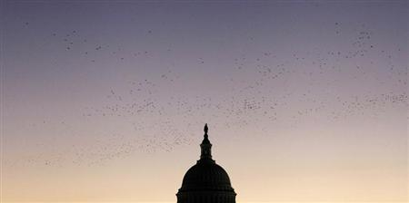 A flock of birds passes by overhead as the sun rises over the U.S. Capitol dome in Washington, October 18, 2013. REUTERS/Jonathan Ernst