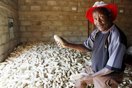 Peasant farmer Joseph Mhlanga stands over a pile of maize or corn cobs in his modest house at Malakata village, about 10 miles (16 km) from the Zambian capital Lusaka, June 20, 2011. REUTERS/Mackson Wasamunu