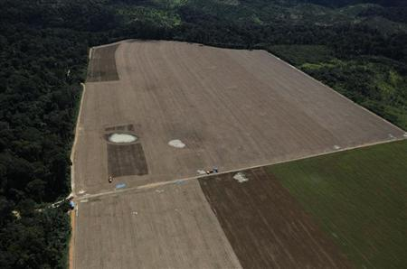 An aerial view of a plot of deforested Amazon rainforest turned into farmland near the city of Uruara, Para state April 23, 2013. (Credit: Reuters/Nacho Doce) Click to enlarge.