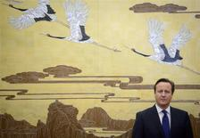 Britain's Prime Minister David Cameron stands before a painting before a signing ceremony at the Great Hall of the People in Beijing December 2, 2013. REUTERS/Ed Jones/Pool