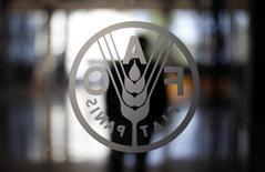 El logo de la Organización de las Naciones Unidas para la Alimentación y la Agricultura (FAO) en su casa matriz en Roma, sep 6 2012. Los precios globales de los alimentos se mantuvieron prácticamente sin cambios en noviembre tras subir el mes anterior, pero cayeron un 4,4 por ciento en la comparación interanual, dijo el jueves la agencia de alimentos de la ONU, que proyectó valores estables o en baja en los próximos meses. REUTERS/Alessandro Bianchi