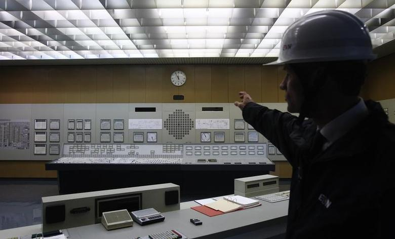 A spokesperson of EVN, the company owning Austria's unique nuclear power plant, shows the switching station in Zwentendorf, some 50 km (31 miles) west of Vienna, March 16, 2011. REUTERS/Heinz-Peter Bader