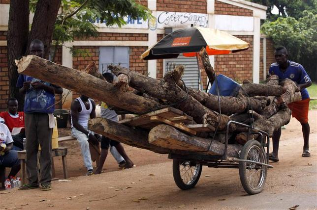 A man pushes a cart loaded with wood in Bangui December 9, 2013. REUTERS/Emmanuel Braun