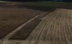 Trator trabalha em uma plantação de trigo perto da cidade de Uruará, no Pará. A Companhia Nacional de Abastecimento (Conab) elevou em 11 por cento sua estimativa para a safra brasileira de trigo em 2013, na comparação com a estimativa de novembro, citando produtividade recorde nas lavouras do Rio Grande do Sul. 23/04/2013. REUTERS/Nacho Doce