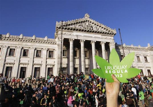 People participate in the so-called 'Last demonstration with illegal marijuana' in front of the Congress building in Montevideo, as Senate debates a government-sponsored bill establishing state regulation of the cultivation, distribution and consumption of marijuana during a session, December 10, 2013. REUTERS-Andres Stapff