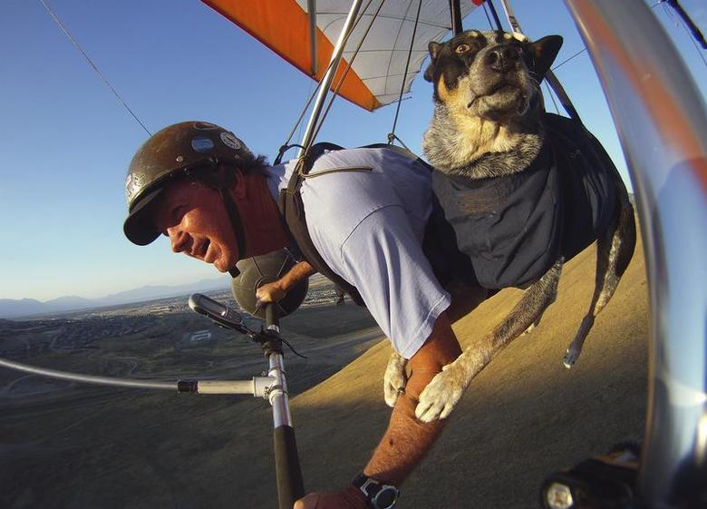 Dan McManus and his service dog Shadow hang glide together outside Salt Lake City, Utah, July 22, 2013. REUTERS/Jim Urquhart