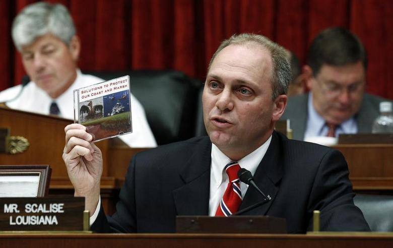 U.S. Representative Steve Scalise (R-LA) holds up a CD entitled ''Solutions to Protect our Coast and Marsh'' that he presented to BP CEO Tony Hayward during questioning at the House Energy and Commerce Committee on Capitol Hill in Washington, June 17, 2010. REUTERS/Kevin Lamarque