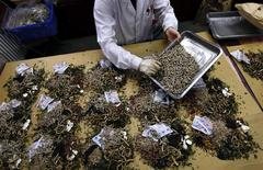 A worker prepares traditional Chinese herbal medicines at Beijing's Capital Medical University Traditional Chinese Medicine Hospital in this May 25, 2011 file photo. REUTERS/David Gray/Files