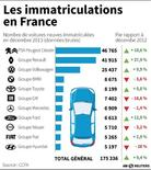 LES IMMATRICULATIONS EN FRANCE
