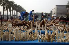 Workers destroy confiscated ivory and ivory sculptures in Dongguan, Guangdong province January 6, 2014. REUTERS/Alex Lee