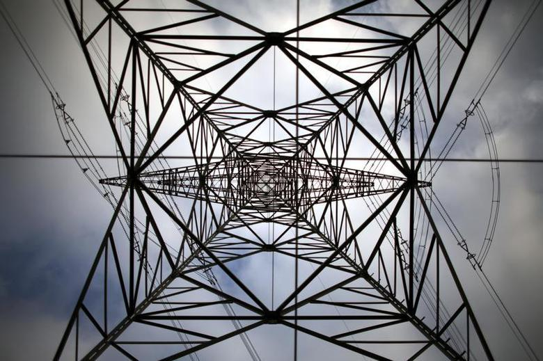 File picture shows a high-voltage power line tower near Berlin, November 7, 2006. REUTERS/Pawel Kopczynski/Files