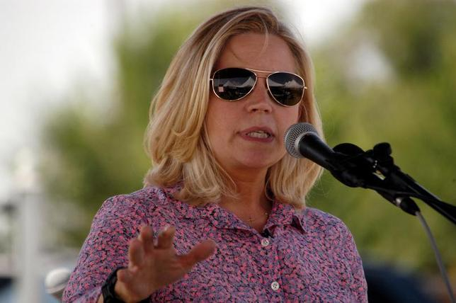U.S. Senate candidate Liz Cheney speaks to voters during a Republican and Tea Party gathering in Emblem, Wyoming August 24, 2013. REUTERS/Ruffin Prevost