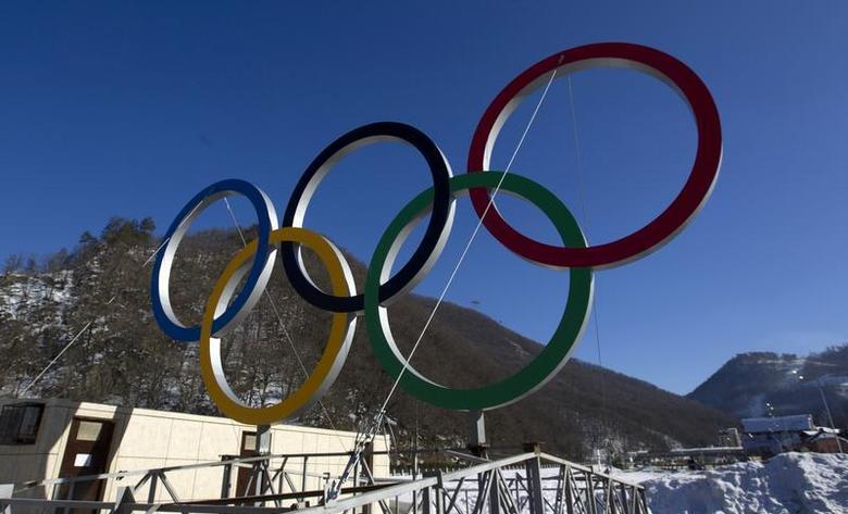 A view of Olympic rings near the resort of Krasnaya Polyana, near Sochi January 4, 2014. REUTERS/Maxim Shemetov