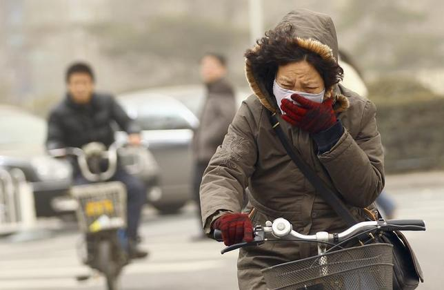 A woman wearing a mask rides her bicycle along a street on a hazy morning in Beijing, February 28, 2013. REUTERS/China Daily (CHINA - Tags: ENVIRONMENT SOCIETY) CHINA OUT. NO COMMERCIAL OR EDITORIAL SALES IN CHINA - RTR3EDNZ