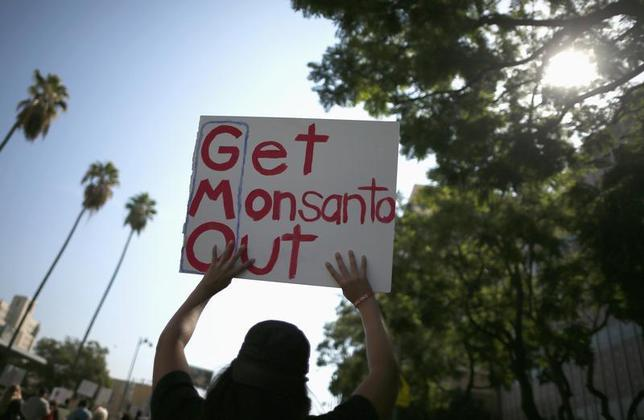 People hold signs during one of many worldwide ''March Against Monsanto'' protests against Genetically Modified Organisms (GMOs) and agro-chemicals, in Los Angeles, California October 12, 2013. REUTERS/Lucy Nicholson