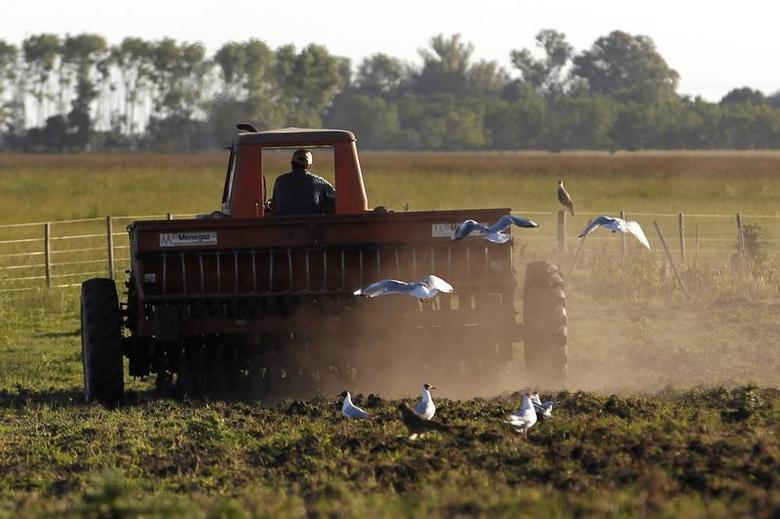 Farmer Rodolfo Picchi drives a tractor pulling a sowing machine to plant sorghum at the town of Estacion Islas in Buenos Aires province, November 24, 2012. REUTERS/Enrique Marcarian