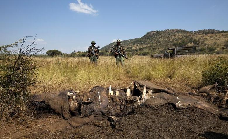 Members of the Pilanesberg National Park Anti-Poaching Unit (APU) stand guard as conservationists and police investigate the scene of a rhino poaching incident April 19, 2012. Elephant and rhino poaching is surging, conservationists say, an illegal piece of Asia's scramble for African resources, driven by the growing purchasing power of the region's newly affluent classes. In South Africa, nearly two rhinos a day are being killed to meet demand for the animal's horn, which is worth more than its weight in gold. Picture taken April 19, 2012. REUTERS/Mike Hutchings