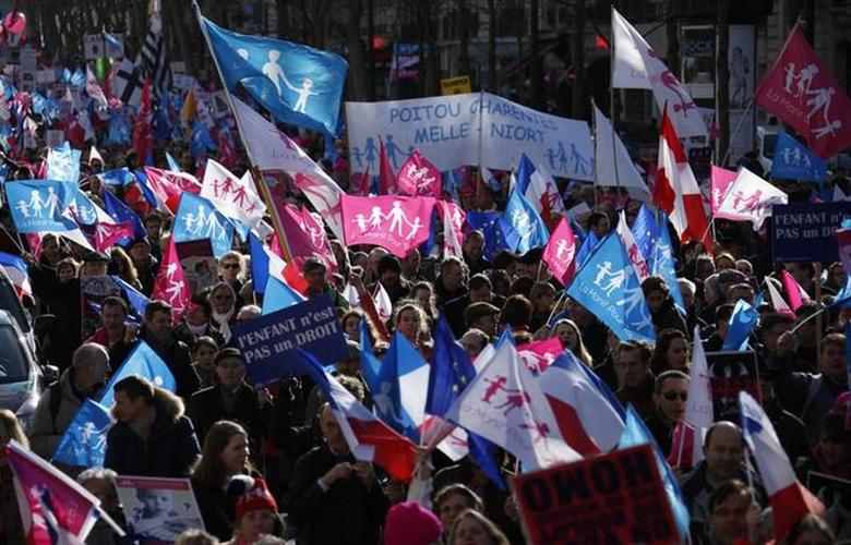 People wave trademark pink. blue and white flags during a protest march called, ''La Manif pour Tous'' (Demonstration for All) against France's legalisation of same-sex marriage and to show their support of traditional family values, in Paris February 2, 2014. REUTERS/Benoit Tessier
