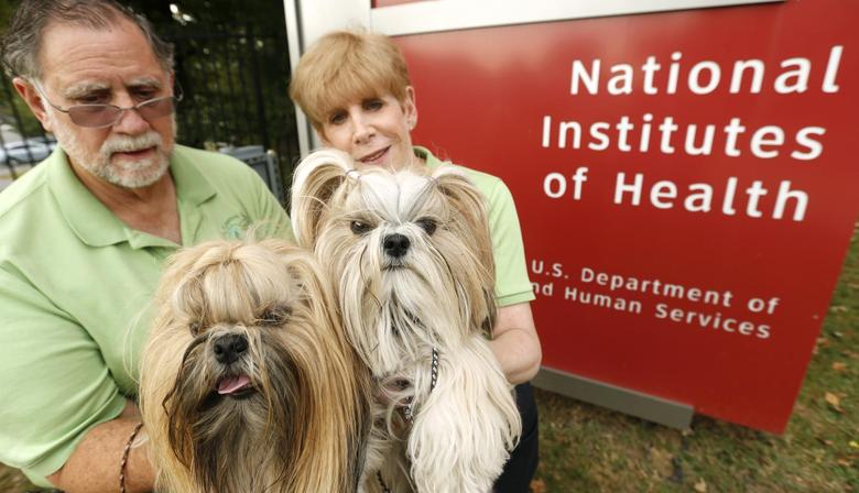 Burton and Shellie Goldstein of Gaithersburg, Maryland hold their therapy Shih Tzu dogs ''The Bear'' and ''Emma'' outside the gates of the U.S. Government's National Institutes of Health in Bethesda, Maryland, October 4, 2013. REUTERS/Kevin Lamarque