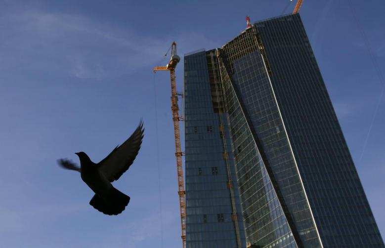 A pigeon flies next to the construction site of the new European Central Bank (ECB) headquarters in Frankfurt, December 3, 2013. REUTERS/Kai Pfaffenbach