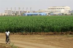 Un trabajador pasa junto a una plantación de caña de azúcar de la firma Kenana ubicada al sur de Jartum, mayo 14 2013. El mercado global de azúcar podría registrar un pequeño déficit en 2014/2015 luego de cuatro años de superávit en la medida en que los productores luchan por cubrir sus costos. REUTERS/Mohamed Nureldin Abdallah