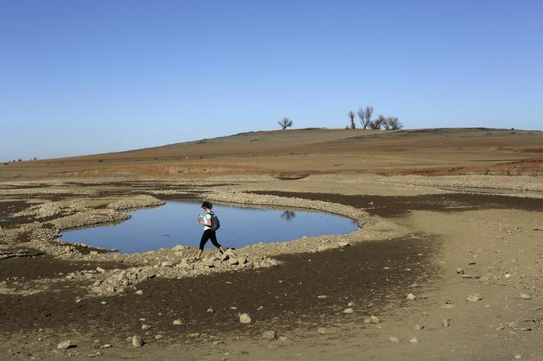 A visitor walks near the receding waters at Folsom Lake, which is 17 percent of its capacity, in Folsom, California January 22, 2014. REUTERS/Robert Galbraith